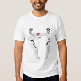 Male karate instructor teaching martial arts to t shirt