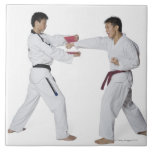 Male karate instructor teaching martial arts to large square tile