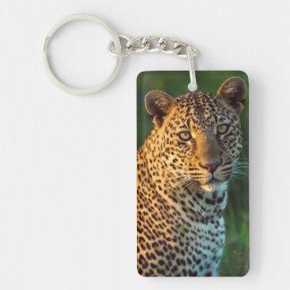 Male Leopard (Panthera Pardus) Full-Grown Cub Keychain