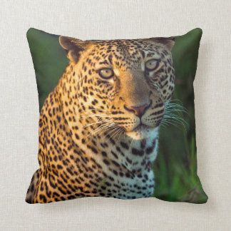 Male Leopard (Panthera Pardus) Full-Grown Cub Throw Pillow