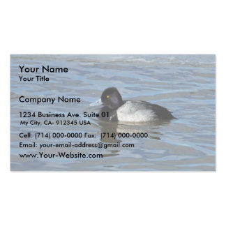 Male Lesser Scaup Business Card Templates