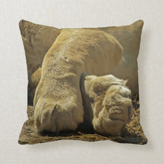 Male Lion and Lion Paws pillow