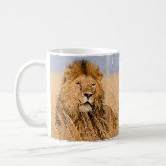 Male Lion Hidden in Grass Coffee Mug