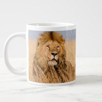 Male Lion Hidden in Grass Giant Coffee Mug