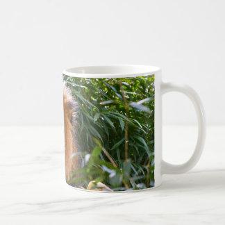 Male Lion King of Beasts coffee mug
