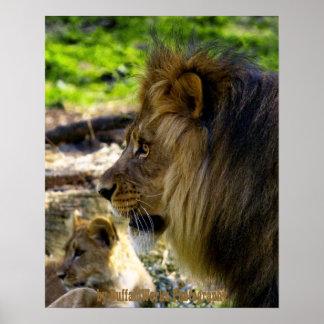 Male Lion Left Poster