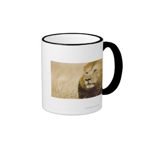 Male lion (Panthera leo) portrait, Masai Mara, Ringer Coffee Mug