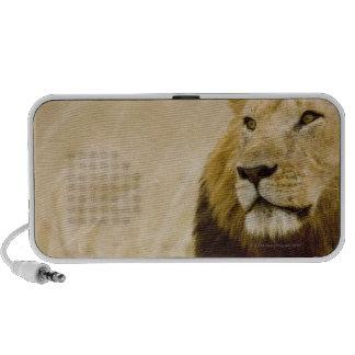 Male lion (Panthera leo) portrait, Masai Mara Notebook Speakers