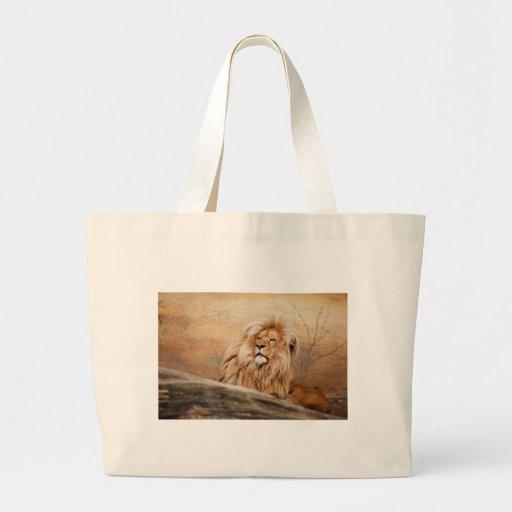 Male Lion Photo Bag