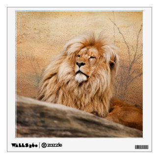 Male Lion Photo Wall Decal