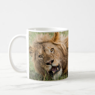 Male Lion Resting Coffee Mug