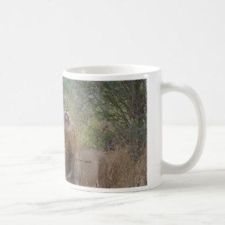 Male Lion Roar Coffee Mug