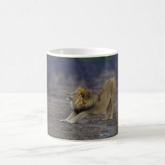 Male Lion Stretching Panthera Leo Yoga Classic White Coffee Mug