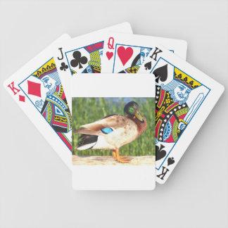 Male Mallard duck Bicycle Playing Cards