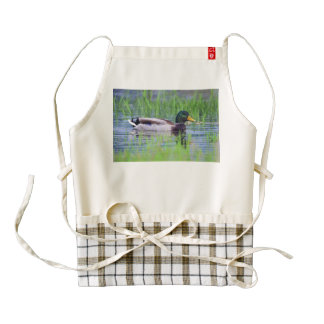 Male mallard duck floating on the water zazzle HEART apron