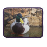 Male Mallard Duck MacBook Pro Sleeve