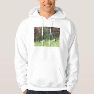 Male Mallard Ducks Hoodie Sweatshirt