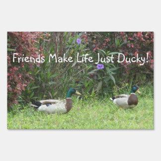 Male Mallard Ducks Yard Sign