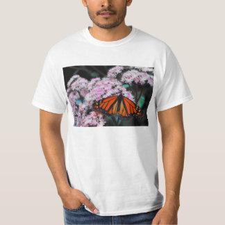 Male Monarch Butterfly Danaus Plexippus T-shirt