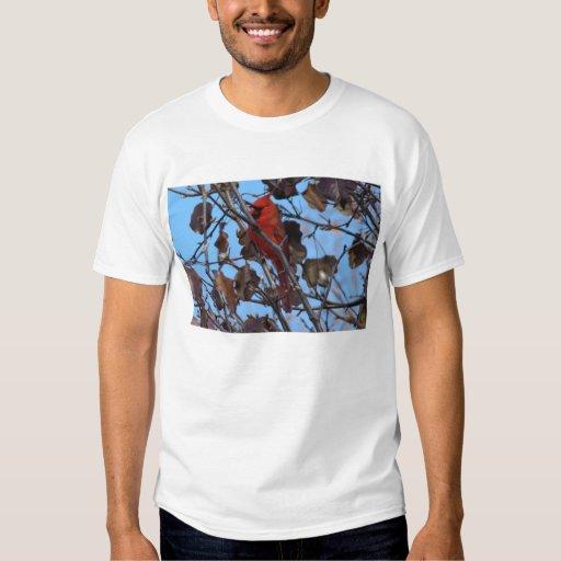 Male Northern Cardinal and Bradford Pear Tree T-shirt