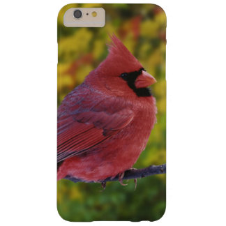 Male Northern Cardinal in autumn, Cardinalis Barely There iPhone 6 Plus Case