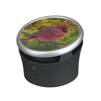 Male Northern Cardinal in autumn, Cardinalis Bluetooth Speaker