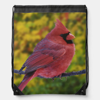 Male Northern Cardinal in autumn, Cardinalis Drawstring Backpack