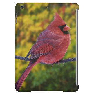 Male Northern Cardinal in autumn, Cardinalis iPad Air Case
