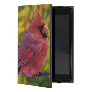 Male Northern Cardinal in autumn, Cardinalis iPad Mini Cover