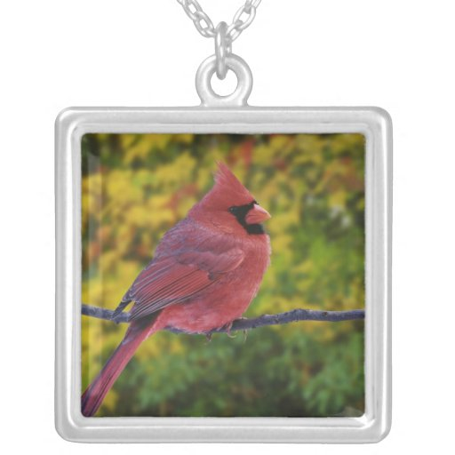 Male Northern Cardinal in autumn, Cardinalis Square Pendant Necklace