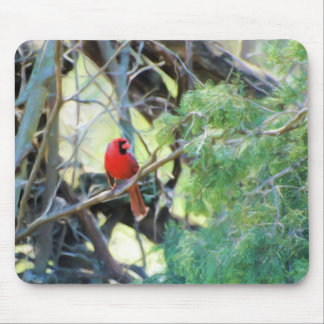Male Northern Cardinal Mouse Pad