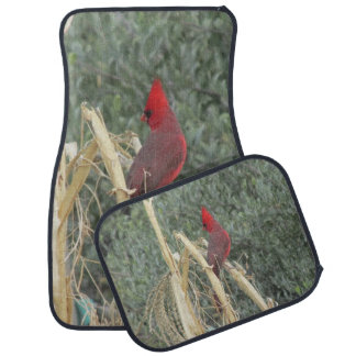 Male Northern Cardinal on Corn Tassel Car Mat