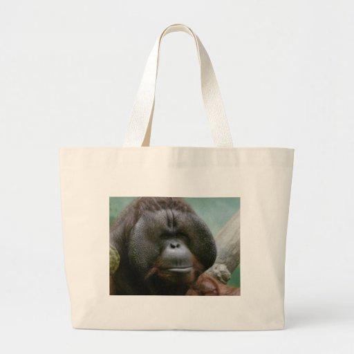 male orangutan bags