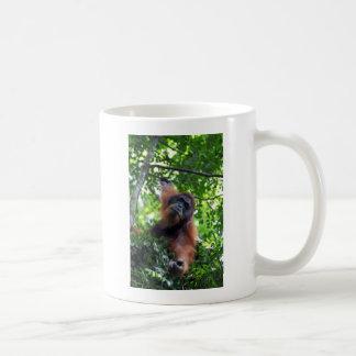 Male orangutan in nest Sumatra rainforest Coffee Mug