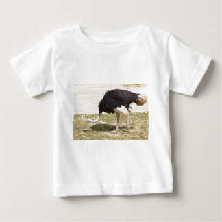 Male Ostrich walking Baby T-Shirt