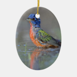 Male Painted Bunting Ceramic Ornament