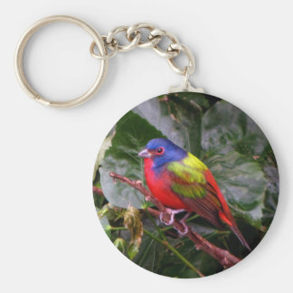 Male Painted Bunting Keychains