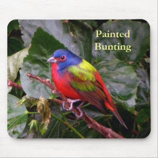 Male Painted Bunting Mouse Pad