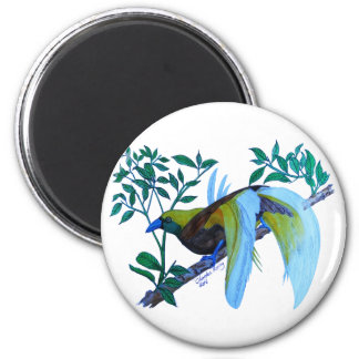 Male Paradise Bird 2 Inch Round Magnet