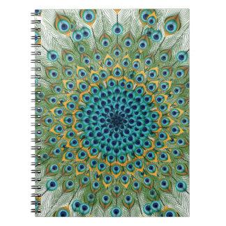 Male Peacock Colorful Mandala Notebook