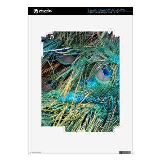 Male Peacock Feathers Blue And Green Decal For iPad 3