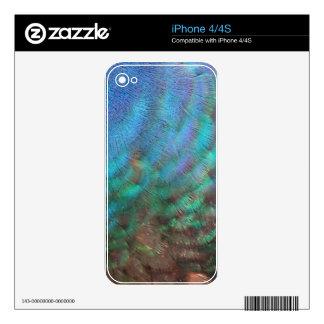 Male Peacock Head iPhone 4 Skins