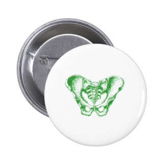 Male Pelvis Green Pins