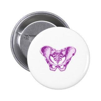 Male Pelvis Purple Pinback Button