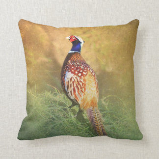 Male Pheasant Pillow