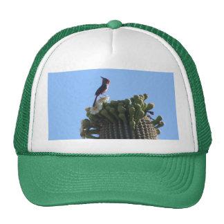 Male Pyrrhuloxia on Saguaro Cactus Blooms Trucker Hat