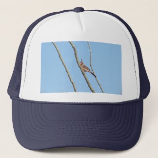 Male Pyrrhuloxia Trucker Hat