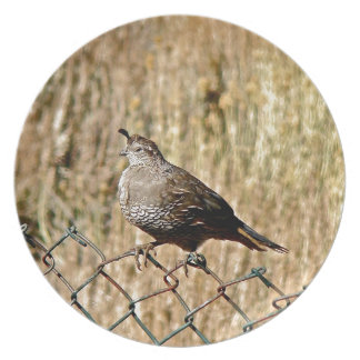 MALE QUAIL ON A FENCE PLATE