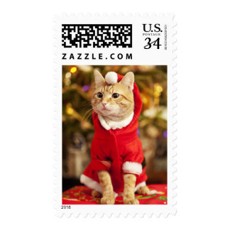 Male red cat wearing santa costume postage stamp