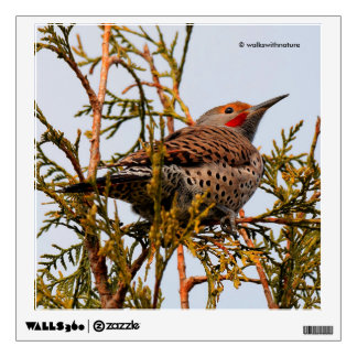 Male Red-Shafted Northern Flicker in a Tree Wall Sticker
